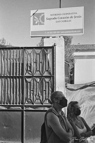 Olive oil tasting and tour, Sociedad Cooperativa Sagrado Corazon