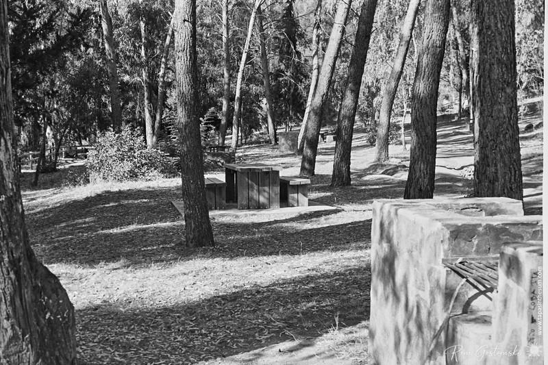 Paraje del Puente Palomillas picnic site