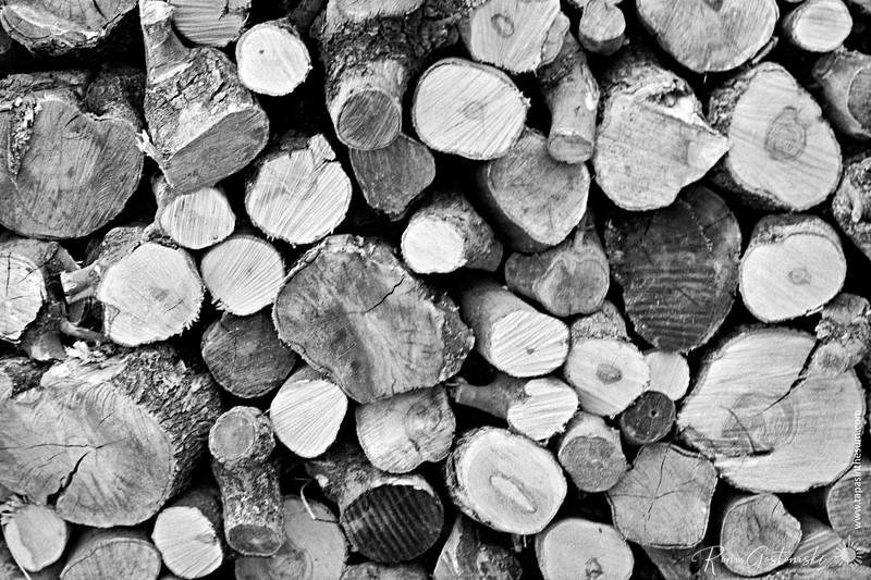 Logs for winter