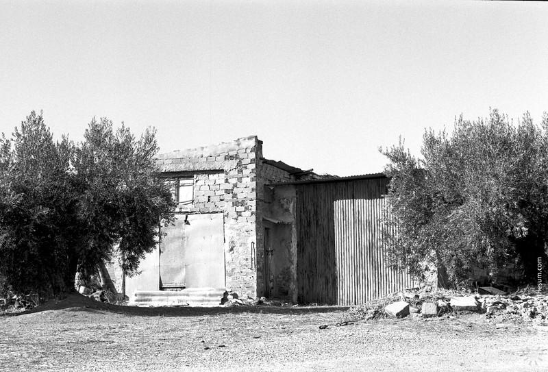 Olive farmer's shed