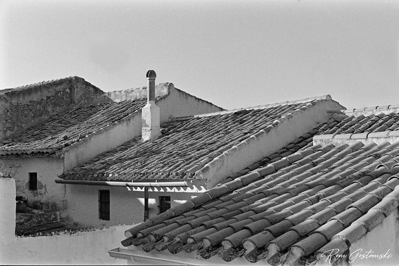 Village house rooftops