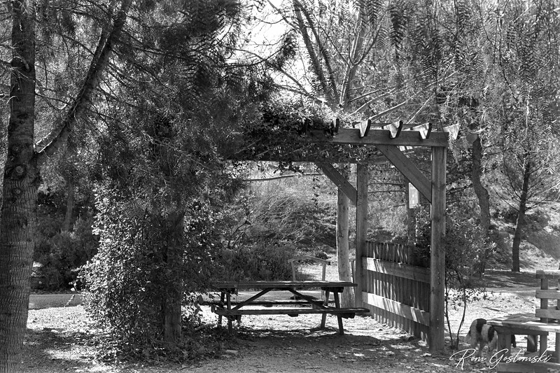 Shady picnic pergola on the Via Verde