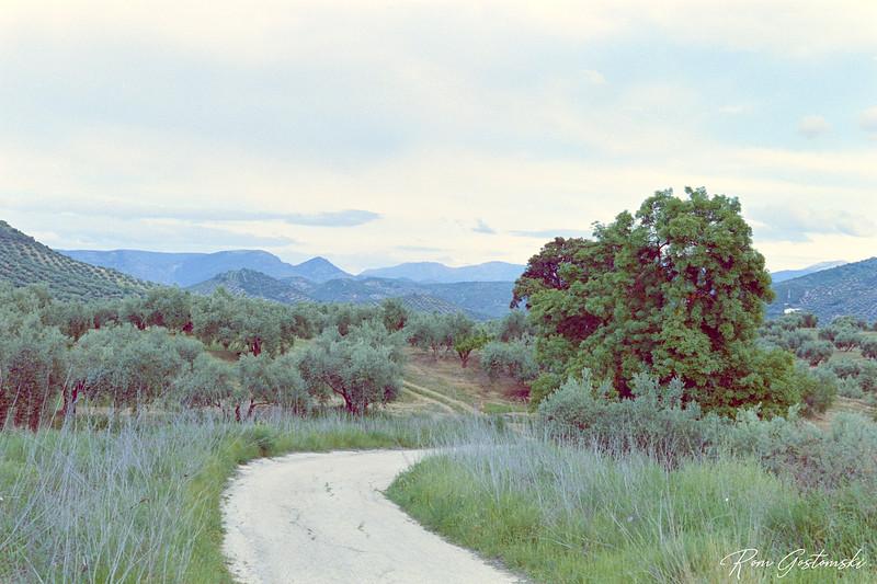 Andalucian landscape