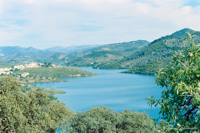 Lake amongst the olive groves in Andalucia