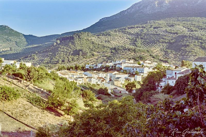 White village amongst the olive groves