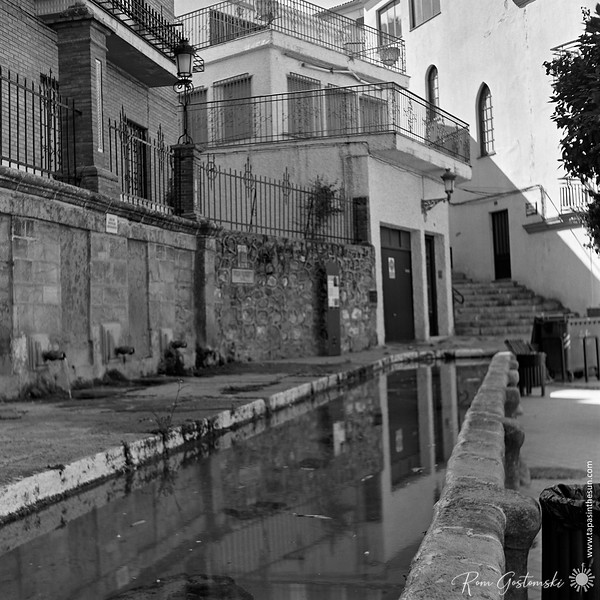 Reflections in the fuente