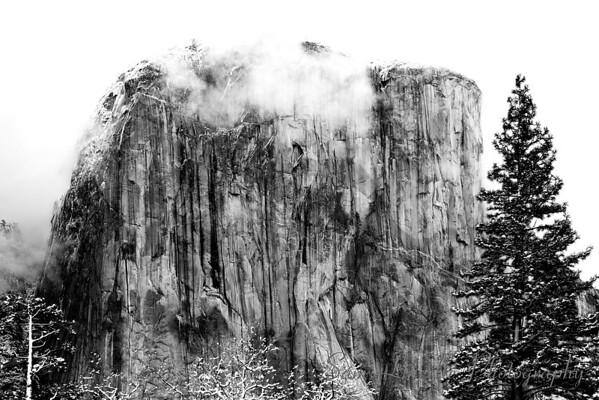 2006-12-17-SL-El Capitan B&W_Bay
