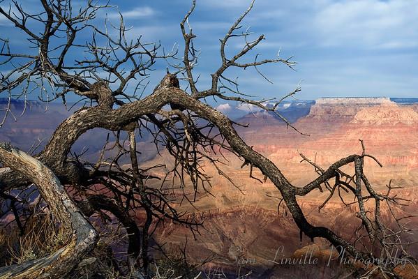 Grand Canyon 2_Bay