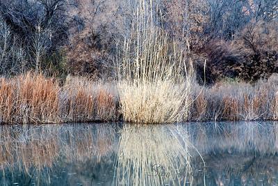 River Morning_Bay