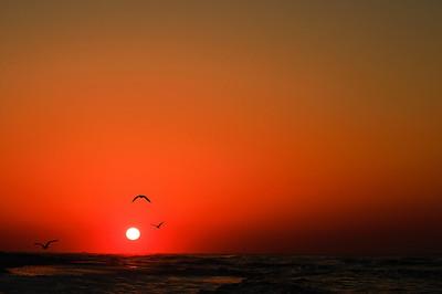 Perdido Key Beach