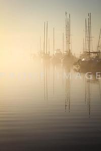 Foggy Morning City Marina