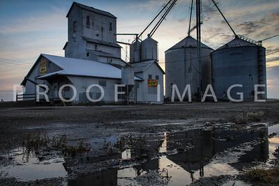 Kent Grain