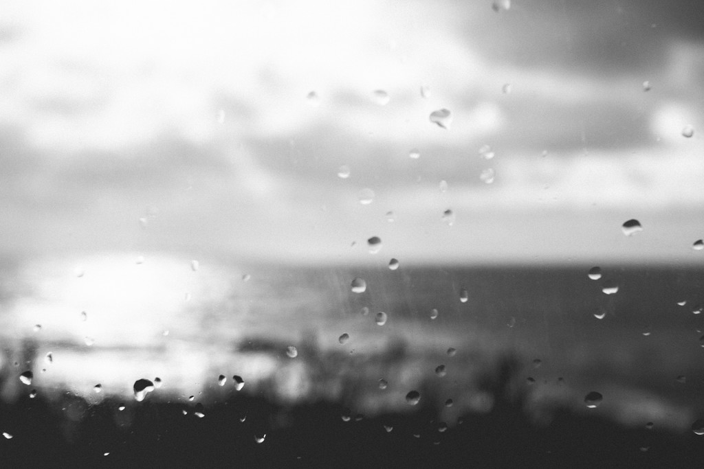 Saltwater Life