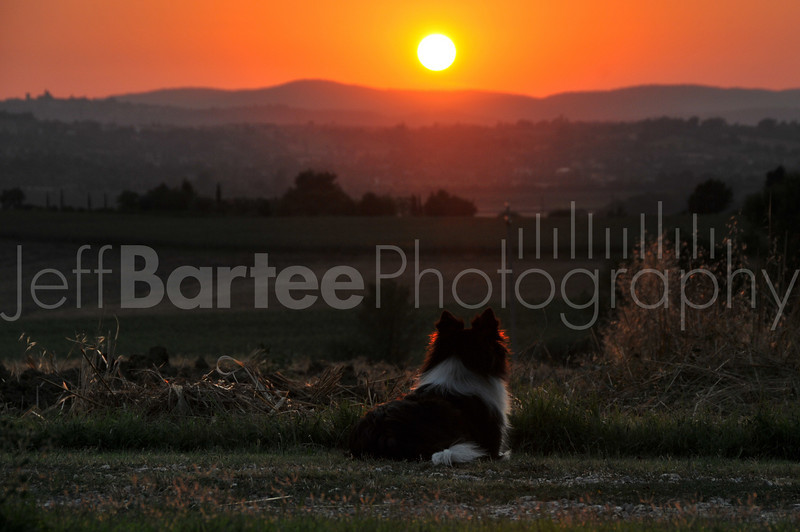 Another Day Gone, Cortona Italy