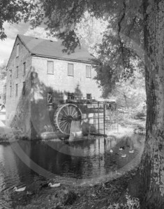 Water wheel, river,Georgia,ducks_IR
