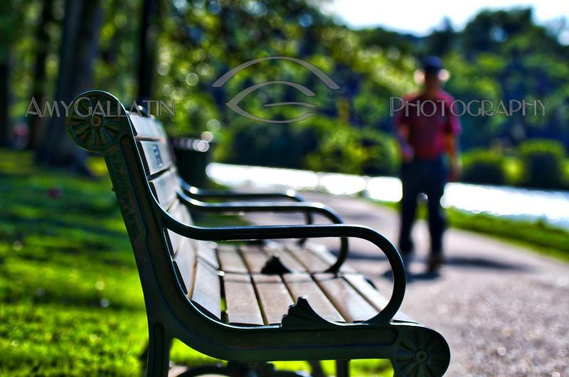 """Bench"" © Amy Gallatin"
