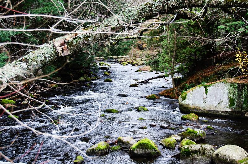 Across a Stream