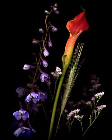 Scano-Flowers-2020-011