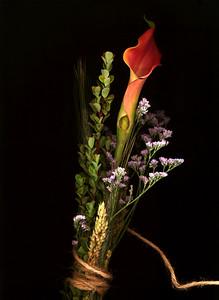 scano-flowers2020-03