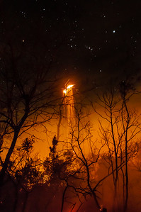 A burning snag emits a shower of sparks well into the night.