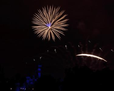 04-19-11 Family Disneyland vacation-334