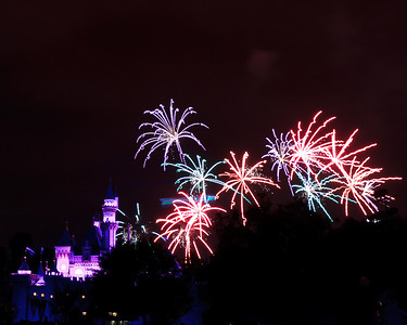 04-19-11 Family Disneyland vacation-249