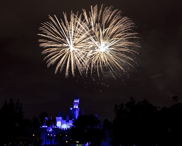 04-19-11 Family Disneyland vacation-247