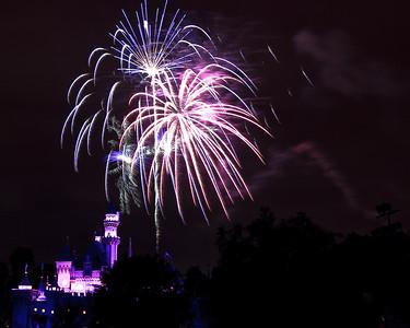 04-19-11 Family Disneyland vacation-241