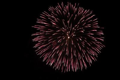 Purple & White Firework
