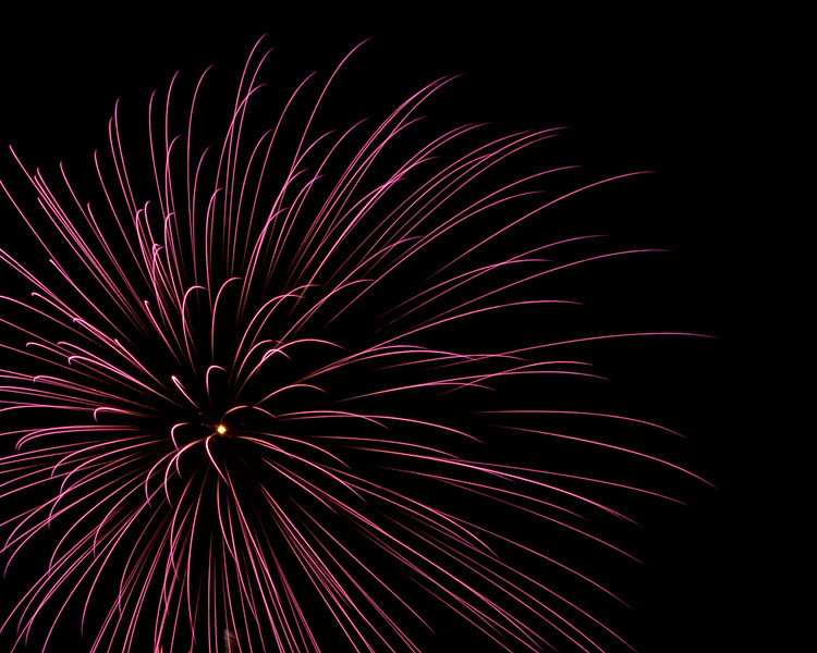 Purple Firework