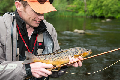 Fly fishing for Gillaroo trout on the River Drowes, Co Leitrim, Ireland