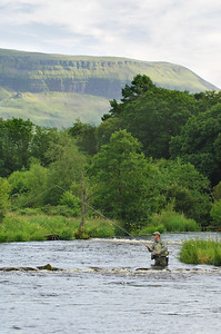 Salmon-angler-wading-River Drowes-with mountain behind