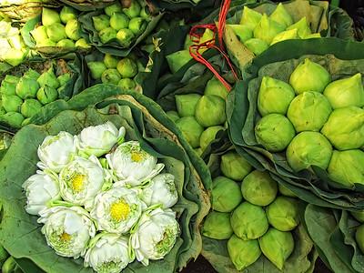 Lotus at Flower Market, Bangkok