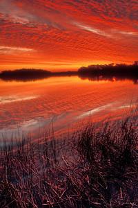 Spectacular sunset at Paurotis Pond in Everglades National Park
