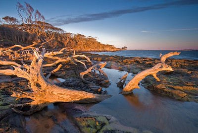 Sunrise on Boneyard Beach, Big Talbot island State Park