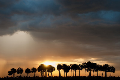 An opening in a glowering sky over the prairie of central Florida