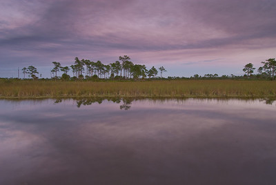 Late evening reflections Big Cypress National Preserve