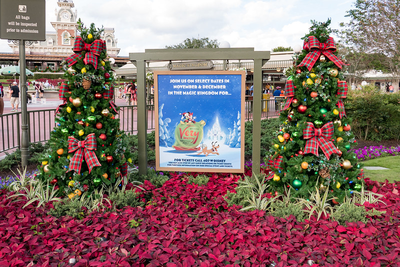 Magic Kingdom all decorated for the Christmas season