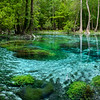 Nature's paint - Gilchrist Blue Springs State Park, Fl 2021