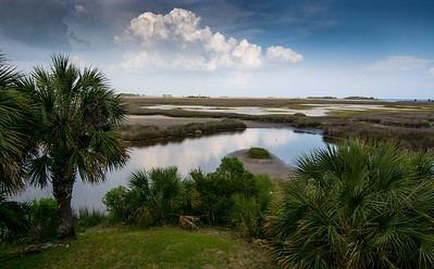 St. Marks coastal marsh