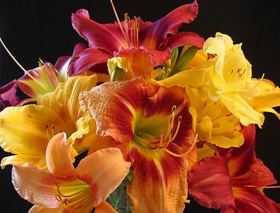 Summer Bouquets 7
