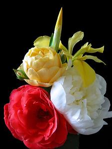 Summer Bouquets 6