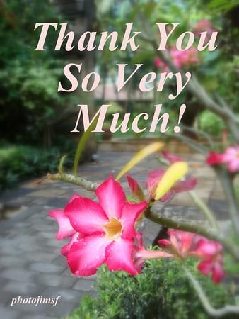 bali poisonous flower thank u svm adj pjsf