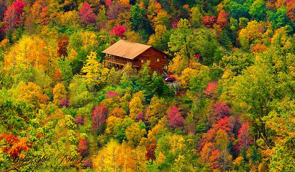 Mesmerizing Smoky Fall Colors @ Great Smoky Mountain National Park