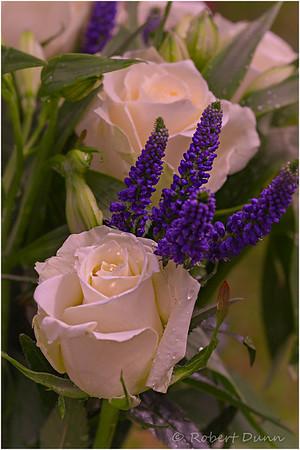 Rain & roses