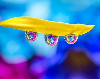 Water Drop Refractions