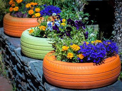 Colorful tires full of flowers
