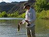 Arizona Verde River Smallmouth Bass