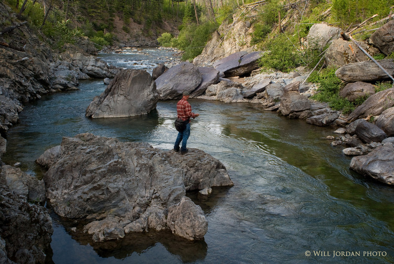 Montana North Fork Blackfoot River Summer