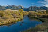 Montana DePuy Spring Creek Paradise Valley Fall